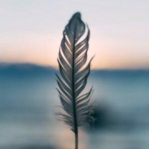 Méditation pleine conscience leadership